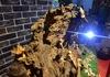Độc đáo nghệ thuật điêu khắc ánh sáng của anh chàng kỹ sư xây dựng