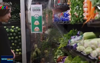 Tâp đoàn bán lẻ chinh phục thị trường thực phẩm tươi sống online