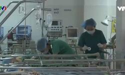 Một số địa phương ngừng dùng thuốc gây tê của Ba Lan